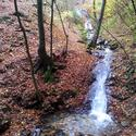 Montseny guilleries 20 thumb r